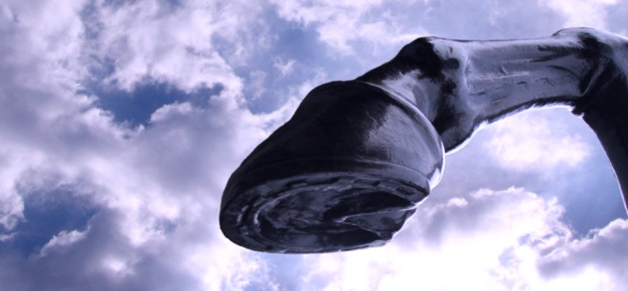 Single sculpted hoof in sharp relief against a dramatic sky.
