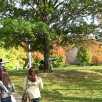 Early autimn with a few trees turning color, students walk along a path